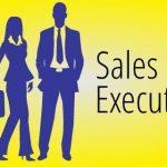 Sr. Executive - Sales